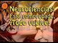 Neurociencias: Está comprobado, ¡Todo vuelve!