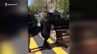 Վարորդներից մեկը էլեկտրաշոկով սպառնում է ցուցարարներին