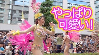 Download Video 【再アップ】コウベッコの大人気のダンサーさん! 2 MP3 3GP MP4