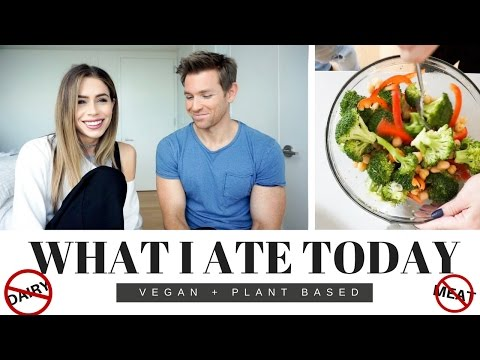 What I Ate Today + Q&A | VEGAN + PLANT BASED