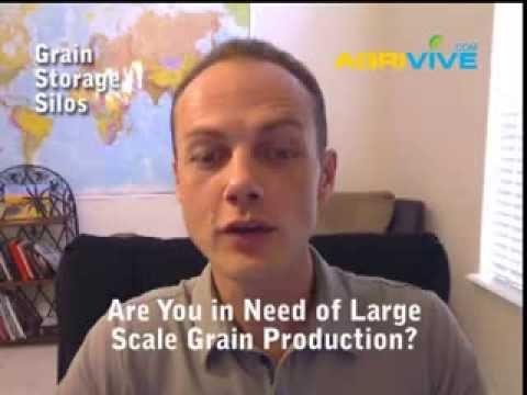 Sale of Bulk Grains, Feed and Grain Stores in Massachusetts, Grain Feeding Cattle, Grain Feed, Feed