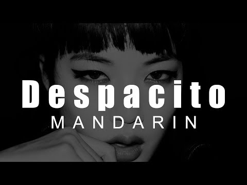 Despacito  Mandarin w Pinyin English Lyrics LyricLaoshi