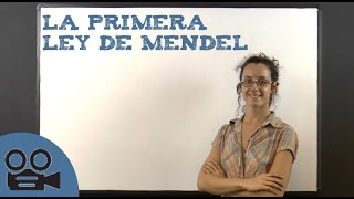 La primera ley de Mendel