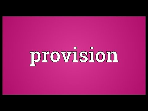 Provision Meaning