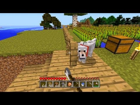 Minecraft - Extending The Farm [40]