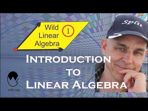 Wild Linear Algebra 1: Introduction to Linear Algebra (N J Wildberger)