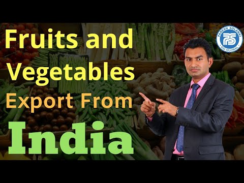 How to Export Fruits and Vegetables From India || Paresh Sol
