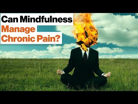 How Meditation Can Manage Chronic Pain and Stress  Daniel Goleman