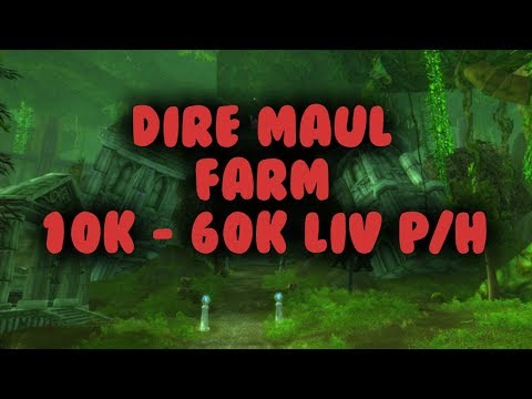 WoW Gold farm - Dire Maul 10 - 60k LiV P/h (Transmog)