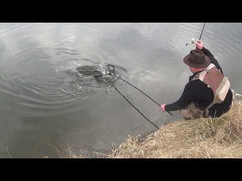Рыбалка в брно