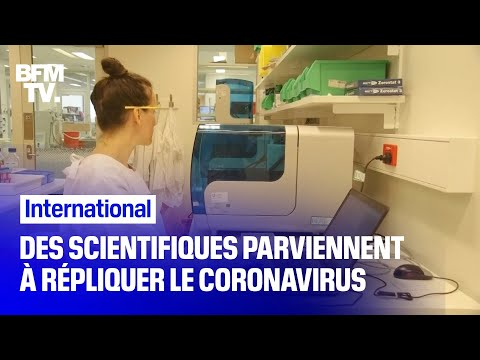 Australie: des scientifiques parviennent à répliquer le coronavirus chinois
