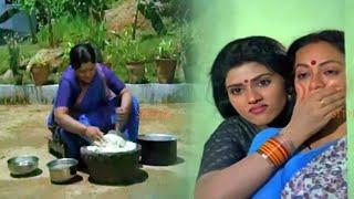 Chinna Kodalu Telugu Full Hd Movie Part -8   Suresh, Vani Vishwanath   Sithaara