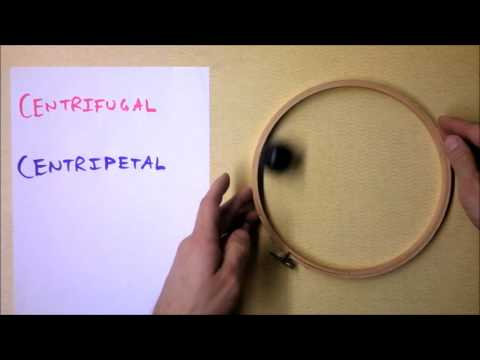 Proof that The Centrifugal Force is not real! | Doc Physics