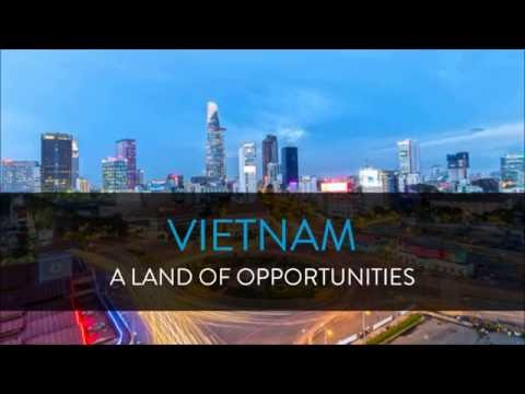 Nielsen - Vietnam At A Glance 2016