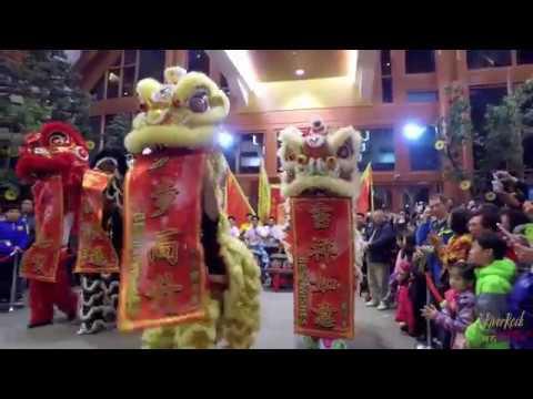 新春舞獅表演 | Chinese New Year Lion Dance 2017