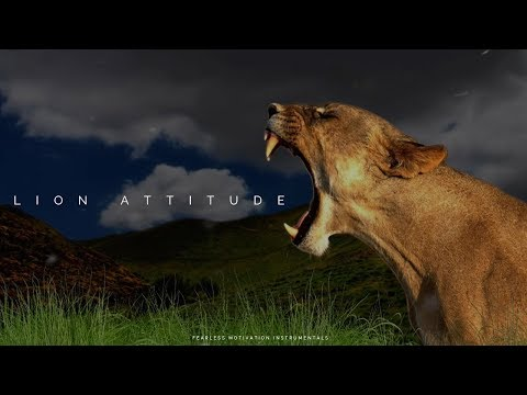 Lion Attitude - Epic Background Music - Sounds Of Power 3