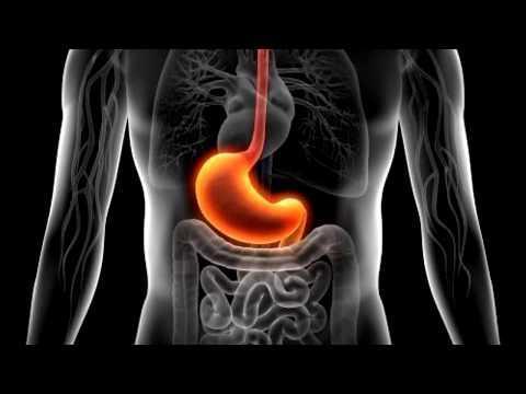 Боли в селезенке – Причины и симптомы боли в селезенке