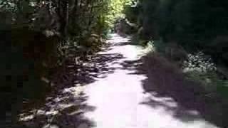 Plym Valley Cycle ride