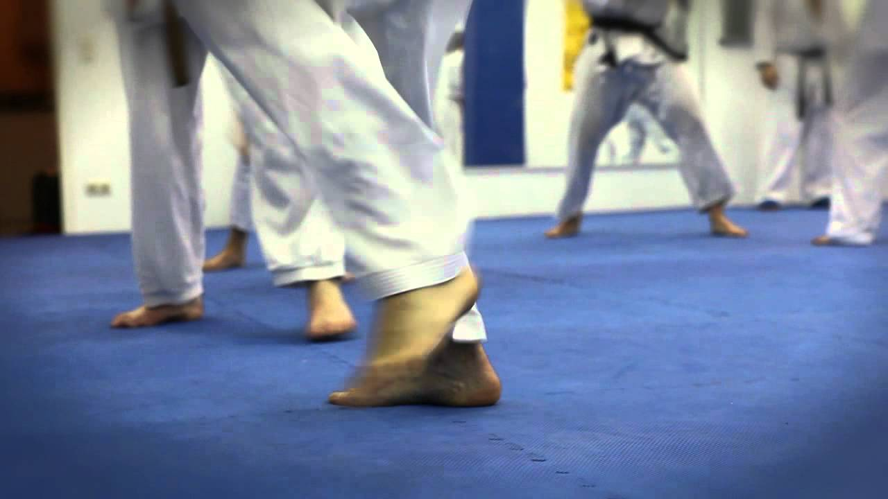 karate academy hamburg