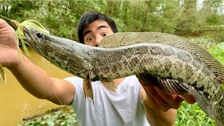 I FINALLY CAUGHT A FRANKENFISH!!! (They INVADED an ABANDONED Golf Course!)