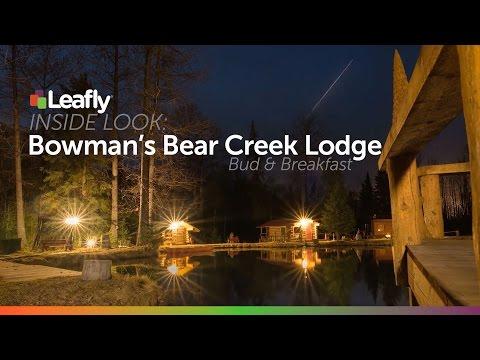 Enjoy a Cannabis Vacation at Bowman's Bear Creek Lodge in Alaska
