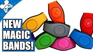 New Magic Bands at Disney World!