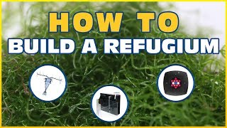 How to Set Up a Refugium: Harvesting Macroalgae To Control Nitrate and Phosphate