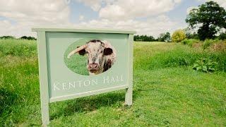 Kenton Hall Estate Longhorn Beef