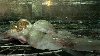 [18 ] Resident Evil 6: Ada Wong Gameplay - Cap 2 Completo