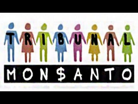 Mock Tribunal Held Against Monsanto in the Hague