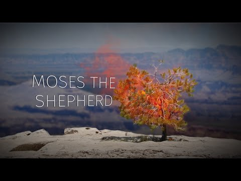 Part 2: Moses the Shepherd | Story of Moses