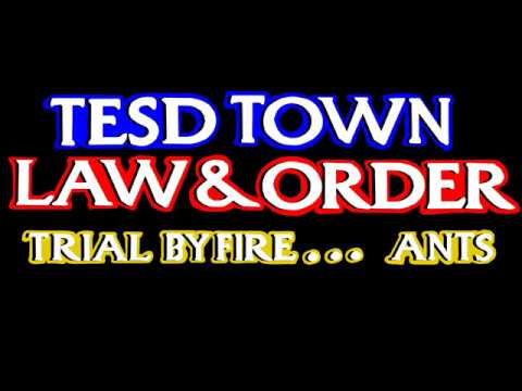 TESD Town Law & Order Trial By Fire... Ants