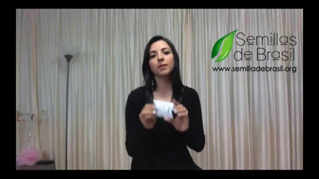Semilla De Brasil Como Saber Cual Es La Original Youtube
