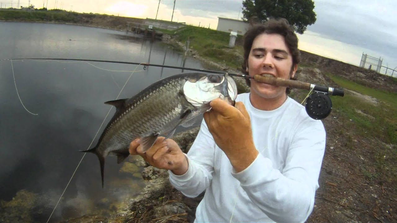 Fly fishing for tarpon in the everglades youtube for Fly fishing for tarpon
