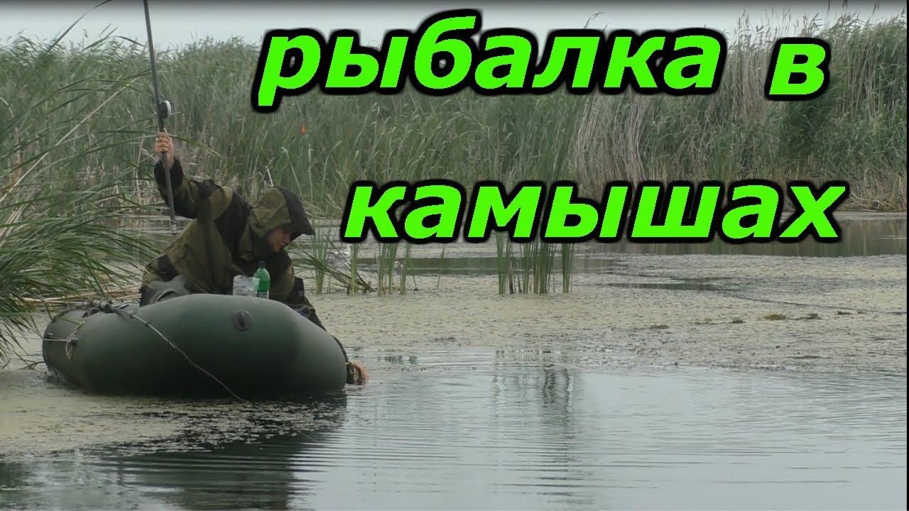 Рыбалка с лодки в камышах