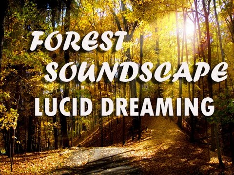 Deep Sleep Forest Soundscape Lucid Dreaming (8 Hour Sleep Music)
