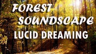 Deep Sleep Forest Soundscape Lucid Dreaming (8 Hour Sleep Music)