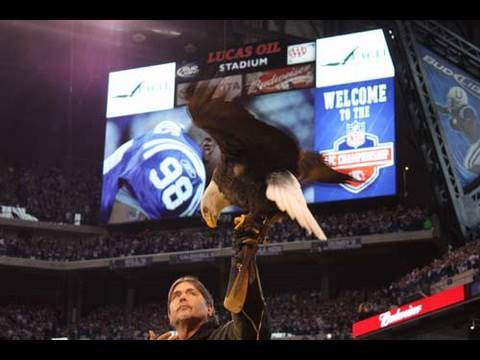 "Eagle ""Challenger"" Flies at AFC Championship 2010 Game (AEF)"
