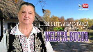 NELUTA BUCUR . Pe ulita armeneasca - Argeseanca mea (oficial video)