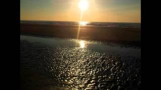 Demian Muller, Andre Butano - Roadie (Original Mix)