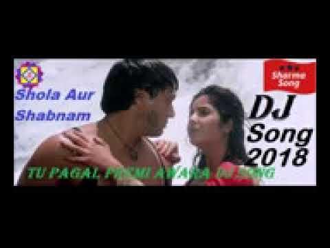Tu Pagal Premi Awara Dj new song 2018