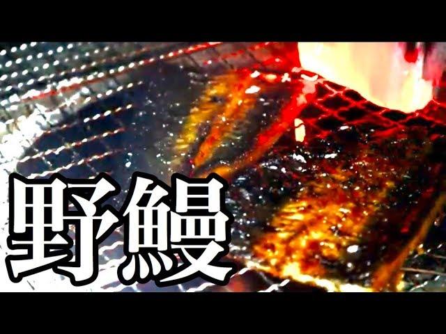 野鰻 ~薪ストで鰻を焼いて食べる~
