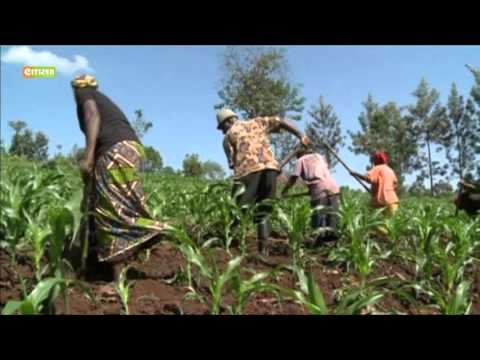 Declining agricultural productivity leading to high poverty rates