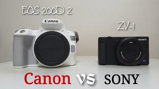 Canon vs Sony  캐논vs소니 색감 비교 영…