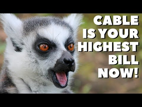 cable-tv-prices-are-now-the-highest-utility-bill-in-your-home!