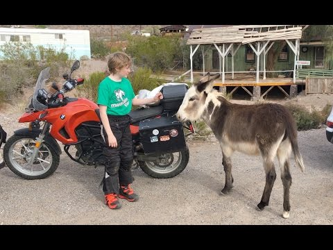 ROUTE 66: OATMAN ARIZONA AND BURROS