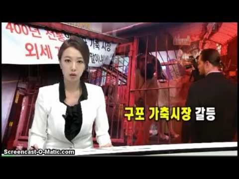 Animals Asia visits Gupo Dog Meat Market in Busan, South Korea (April 2014)