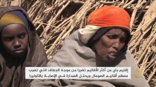 استمرار تدفق النازحين المتضررين من الجفاف بالصومال لبيداوا