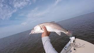 Everglades 10,000 Islands Fishing