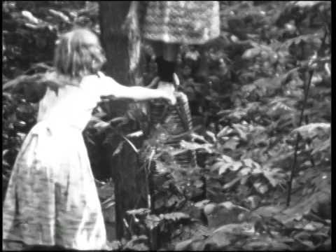 Familiefilm Woltrink Vakantie in Buurse, augustus 1949 (BB01828)